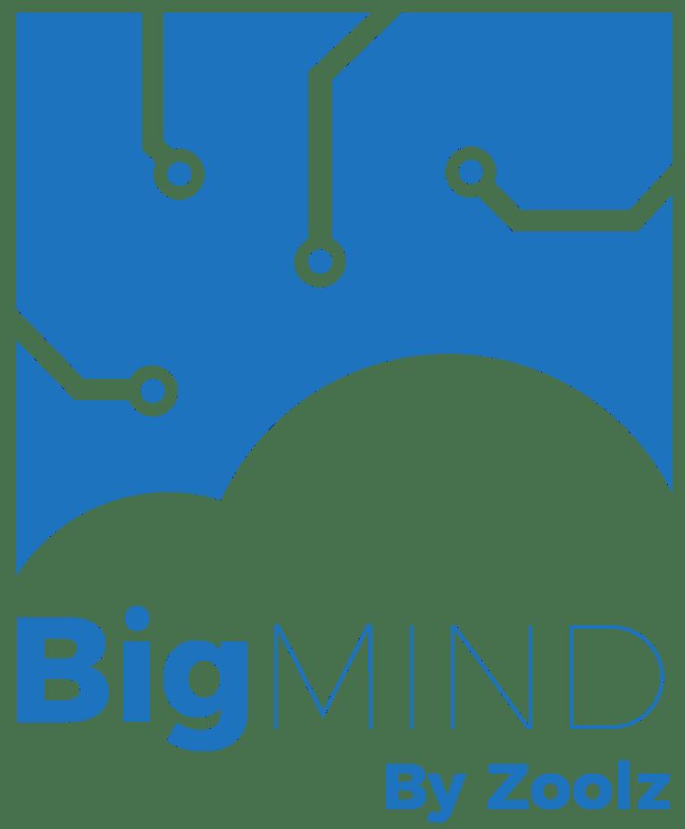BigMIND Logo
