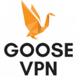 GOOSE VPN Review - Logo