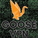 GOOSE VPN Review - Logo